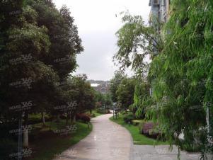 翠屏国际城实景图