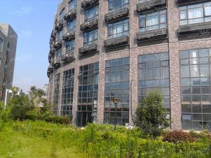 出租 滨湖周边恒华科技园写字楼整层263.2平米