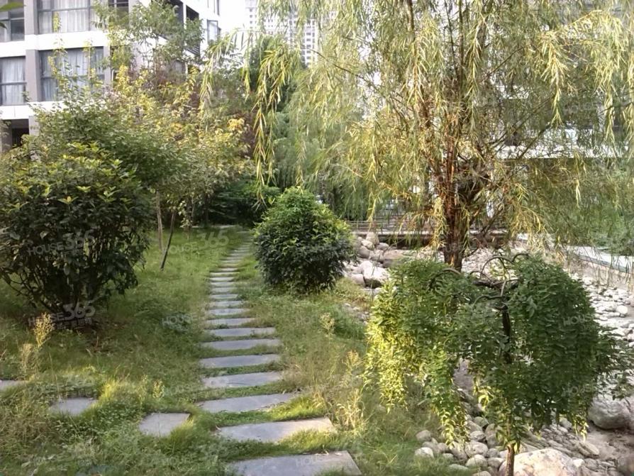 (真实无虚构)梦园学区+双公园+地铁口+蜀山,等待着你的选择!!