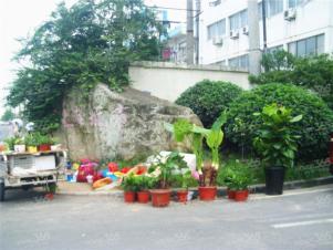 上海城市,合肥上海城市二手房租房