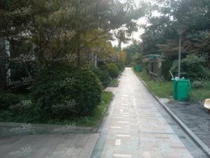 苏建豪庭实景图