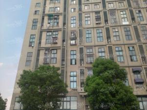 江宁岔路口双龙大道南方花园瑞阳居朝东挑高2房有钥匙急租