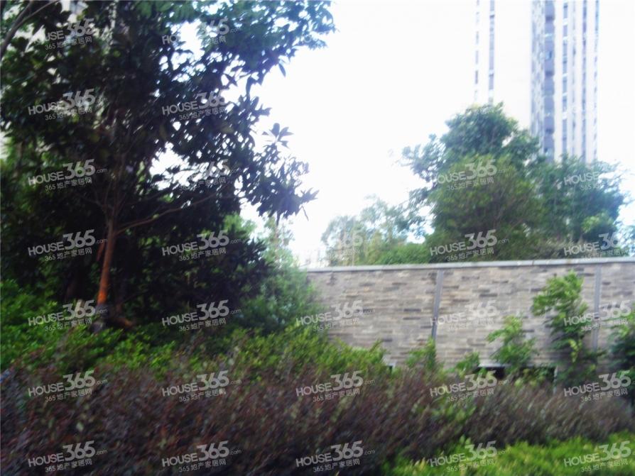 市政府南八中 五十中新区重点学 区 地铁三号线出口 精装真实照片