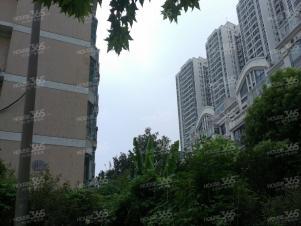 21世纪国际公寓实景图