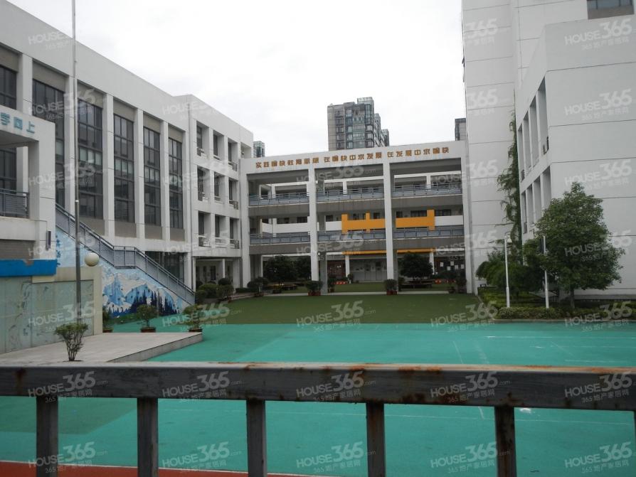 天正滨江5室2厅4卫262.5平米2011年产权房豪华装