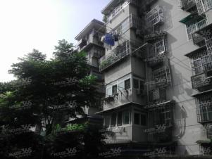 测绘局宿舍,合肥测绘局宿舍二手房租房