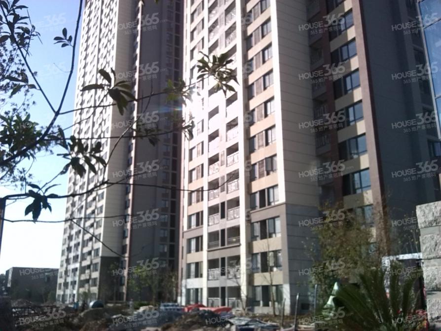滨湖万科城地铁一号线精装三室二厅合肥重点名校学区 采光佳