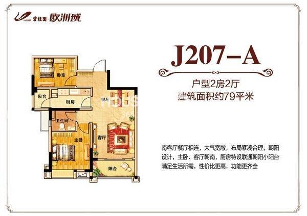 碧桂园欧洲城79平米J207-A户型图