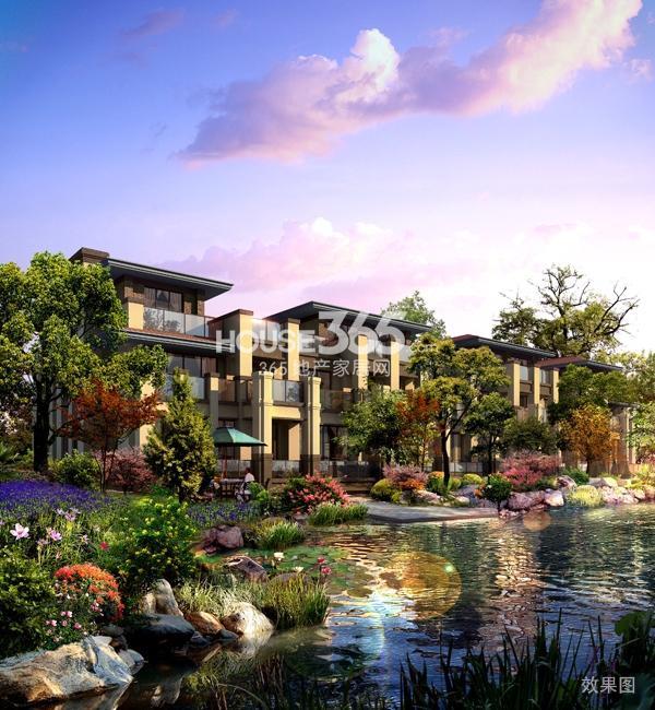 聚湖半岛:三期24#楼余房一口价4988元/平米