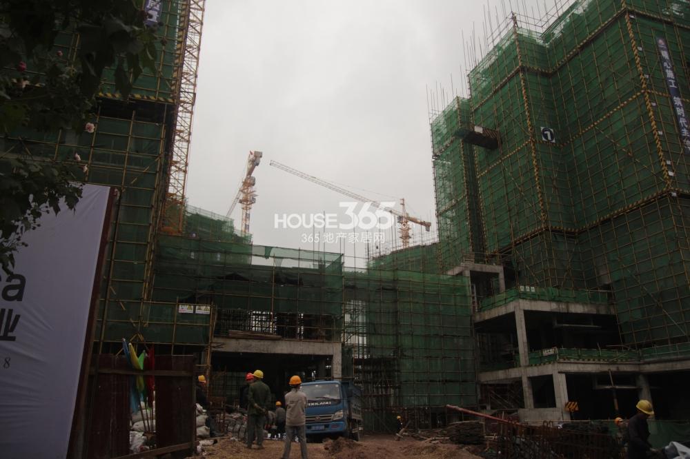 佳兆业广场1号楼工程进度(2013.11.14)